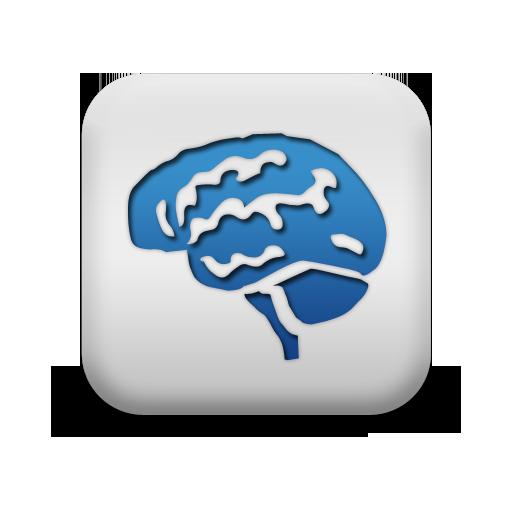 Cyber-Wizard's Brain